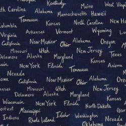 A4004-032 Hatbox - All The States - Navy Canvas Fabric