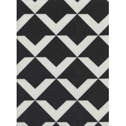 C5062-002 Black & White - Up And Up - Black Fabric