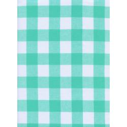 "C5090-004 Checkers - 1"" Gingham - Mint Chip Fabric"