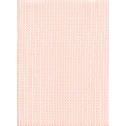 C5000-014 Cotton + Steel Basics - Netorious - Anna Peach Fabric