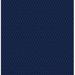 CS102-IN12C Cotton+Steel Basics - Mishmesh - Indigo Canvas Fabric