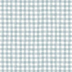 RP208-GY1 Meadow - Painted Gingham - Gray Fabric