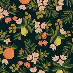 RP300-BK5C Primavera - Citrus Floral - Black Canvas Fabric