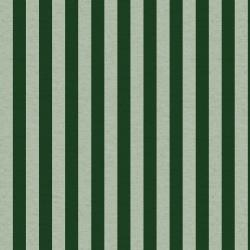 RP309-MI4C Primavera - Cabana Stripe - Mint Canvas Fabric
