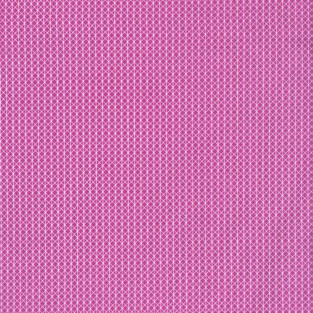 C5000-006 Cotton + Steel Basics - Netorious - Plummy Fabric